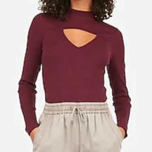 Express Burgundy Cut Out Turtle Neck